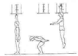pruebas fisicas goes